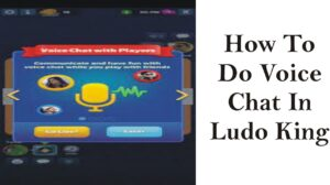 How To Do Voice Chat In Ludo King