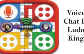 Voice Chat In Ludo King